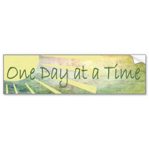 al_anon_one_day_at_a_time_bumper_sticker-r8796466fed4c4d3e8bf4bfea0bbb87ed_v9wht_8byvr_512