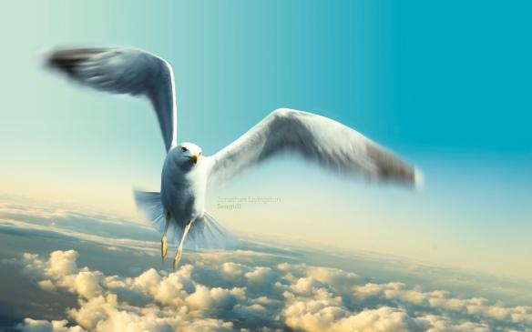 jonathan_livingston_seagull-wide